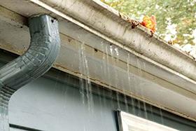 window cleaning in greenville sc